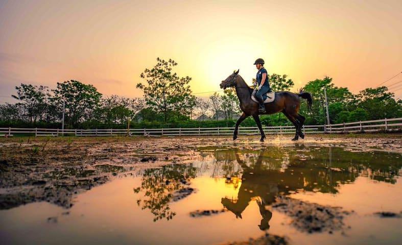 骑士部落•田园牧场生活,骑士体验,远离城市喧嚣,轻奢慢生活住宿体验。(4A景区都乐岩公园白莲机场旁)