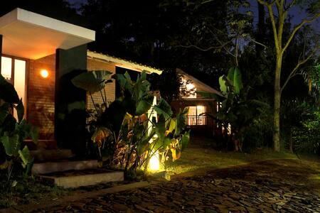 Lodge inmerso en la selva y cerca de la ciudad