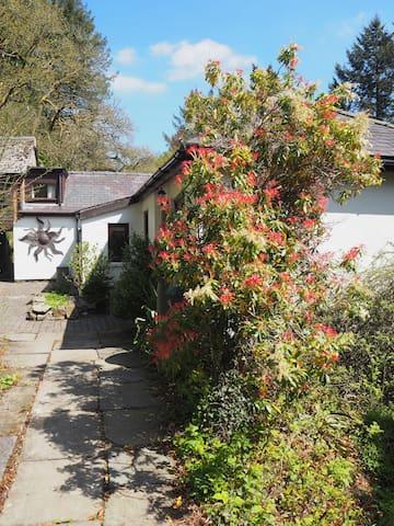 Kite Cottage