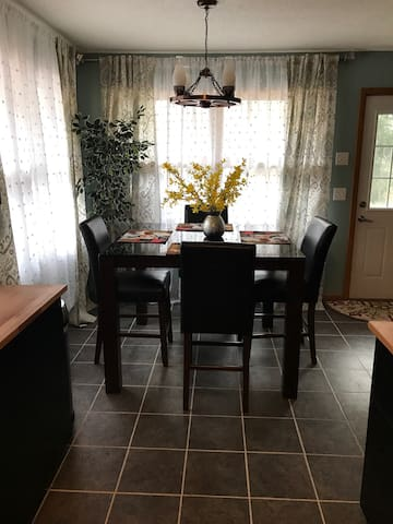 Charming 3 bedroom vacation or bussines house! - Minneapolis - Ház