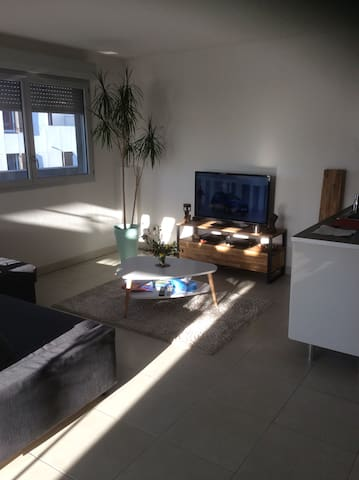 Appartement lumineux, agreable - Montpellier - Wohnung