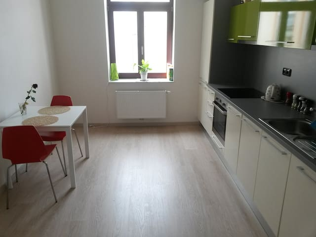 Friendly apartment for you + WELCOME DRINK- pivo:) - Pilsen - Apartment