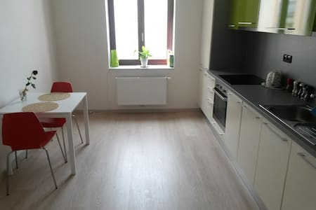 Nice apartment for you + Free parking in center - Pilsen - Wohnung