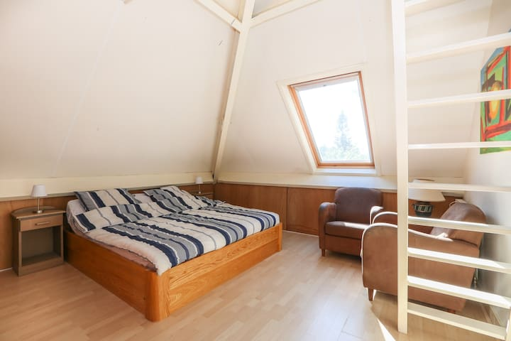 Standard family room in B&B (2+2) shared bathroom - Wageningen - Szoba reggelivel