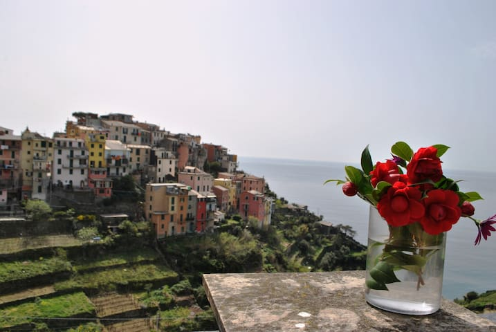 Amazing view  up 5 Terre-Corniglia - Corniglia - Overig