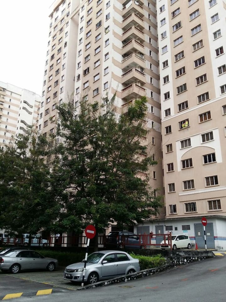 Clean & Comfortable Home Near Ikea/The Curve