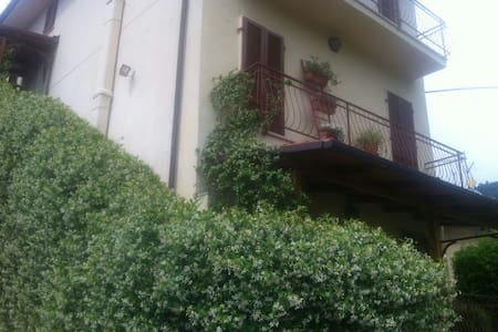 La Bouganville - Pietrasanta - Apartment - 1