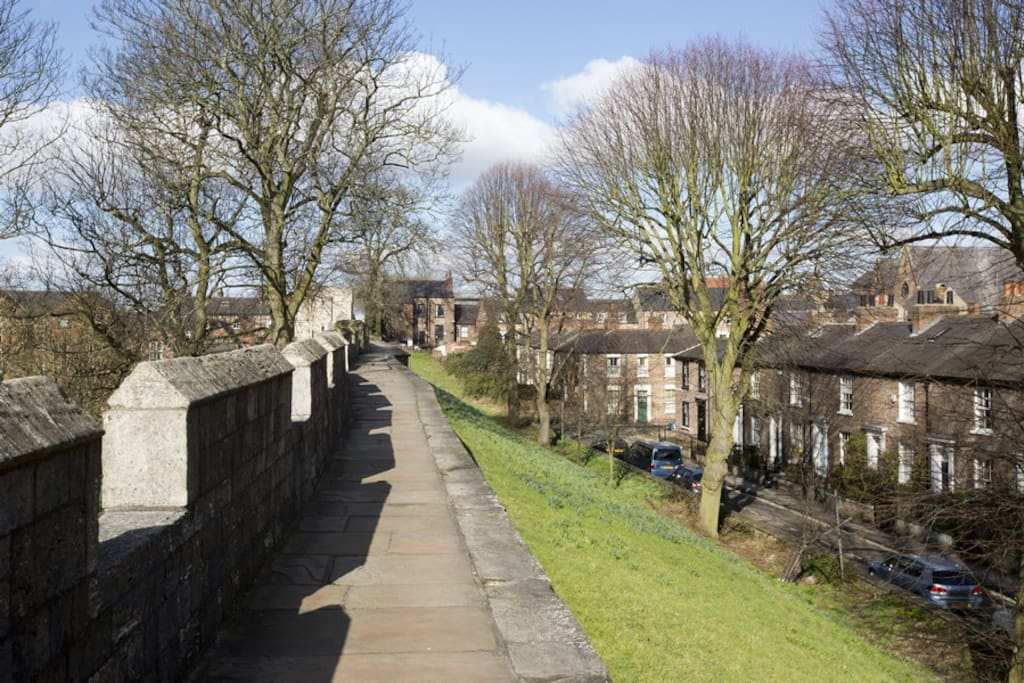 Dewsbury Terrace from York City wall
