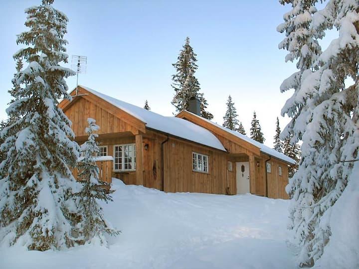 Cozy family cabin