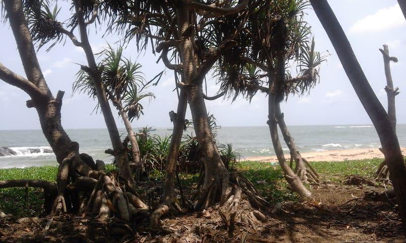 'SAI DHAM' Beach House