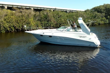 32ft Cruisers Yacht with cozy Cabin - Fort Myers - Bot