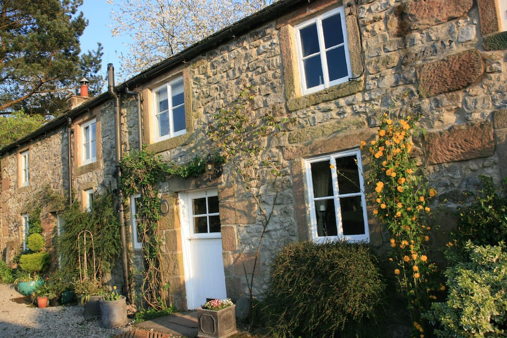 Grade II Listed Lancaster Cottage, full of character and original features, glowing in the early morning springtime sunshine.