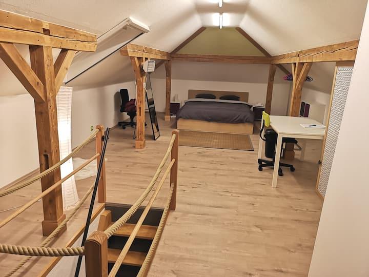 Chambre privée de 45m2 dans maison individuelle