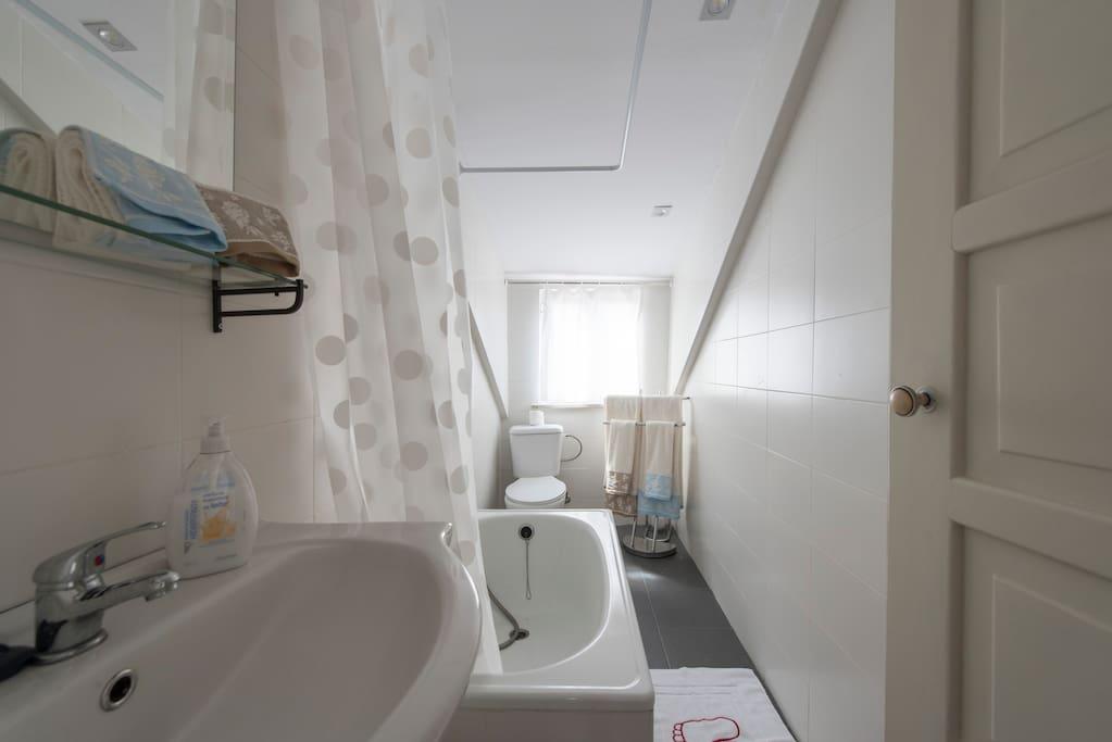 Bathroom with mini bathtub