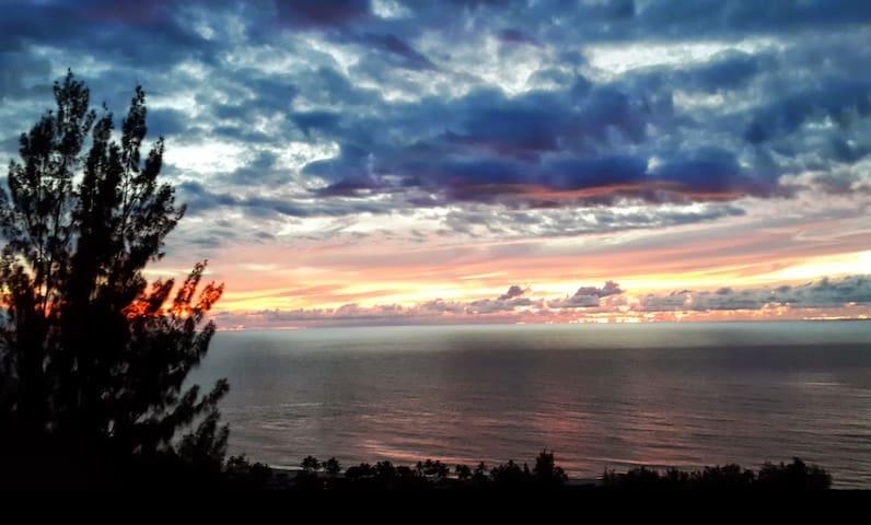 Beautiful Studio 1bd/1 bath  ocean view