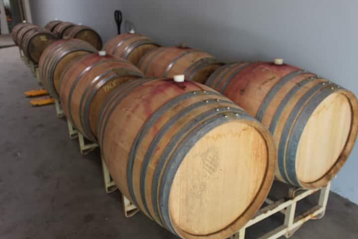 specialty beer brewed in wine casks