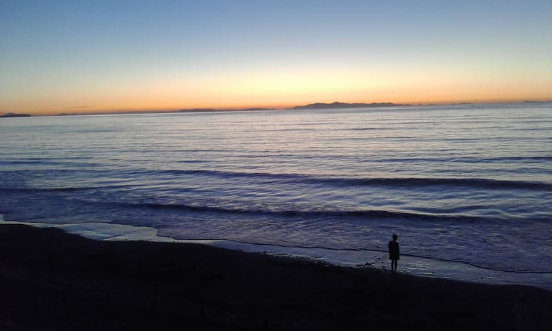 Beachfront bliss - Paraparaumu - Huis