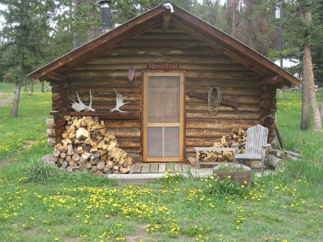 Homestead Cabin experience - Gardiner