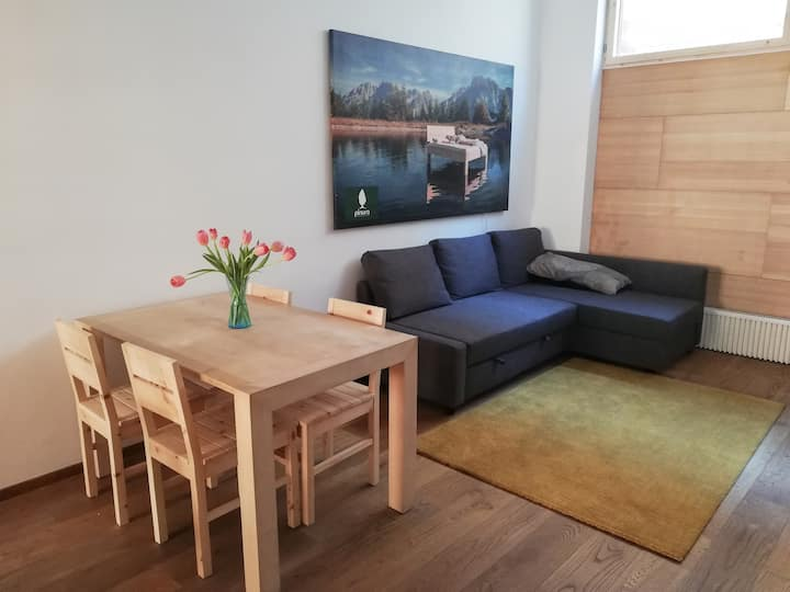 Stone pine apartment