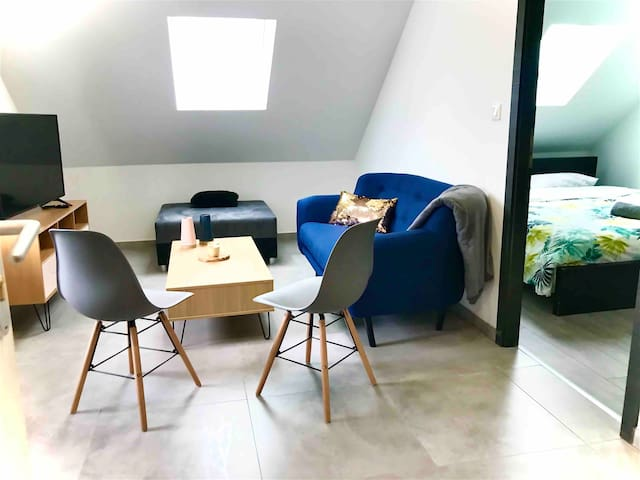 Cosy & Standing appartement