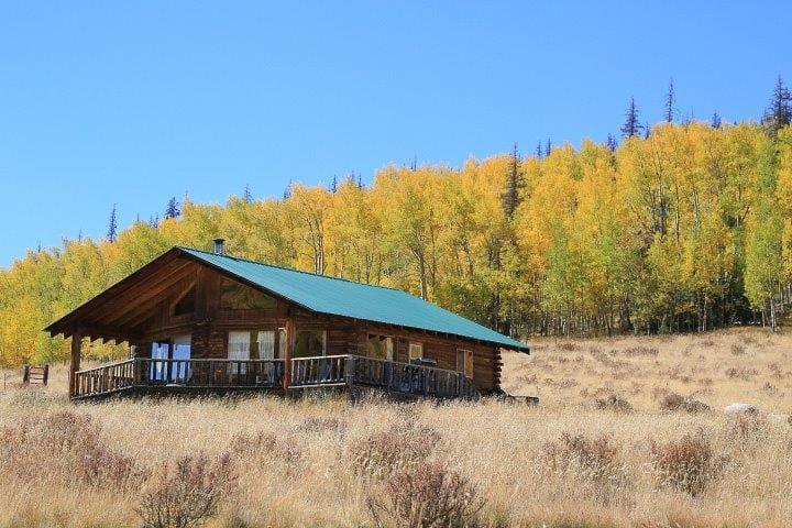 Pure nature zero technology pet friendly cabins for for Pet friendly colorado cabins