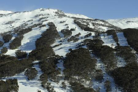 ski-in     Ski down Funnel Web to your back door - Kosciuszko National Park - Таунхаус