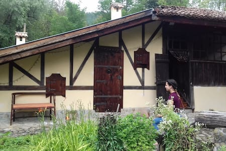 Forest house in Elena montain Petrof hof