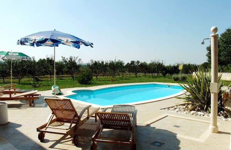 Villa Brig with private pool - Jakovici - Daire