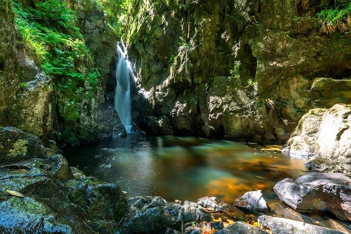 Stanley Ghyll 60ft waterfall - a short walk away!