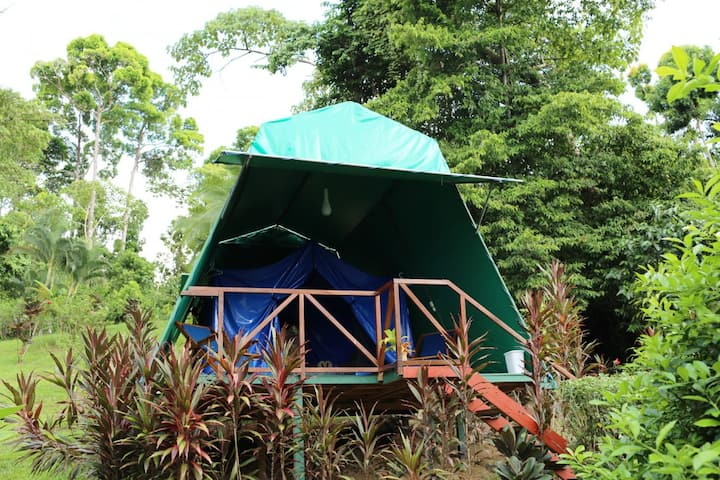 Eco Tent- authentic nature experience