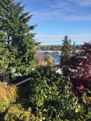 Looks out over Portage Bay, Across from UW and downtown.