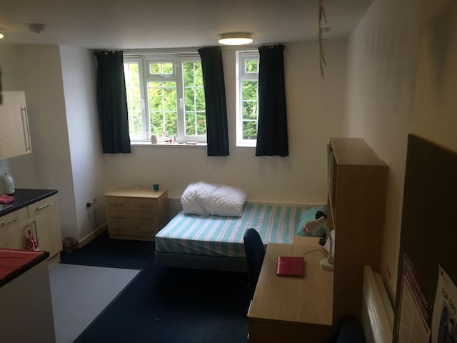 Lovely and Quiet Studio - Exeter - Apartment