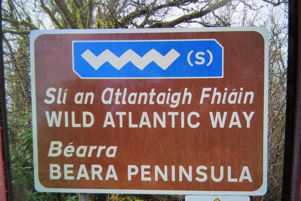 Tour The Wild Atlantic Way & Beara Peninsula.