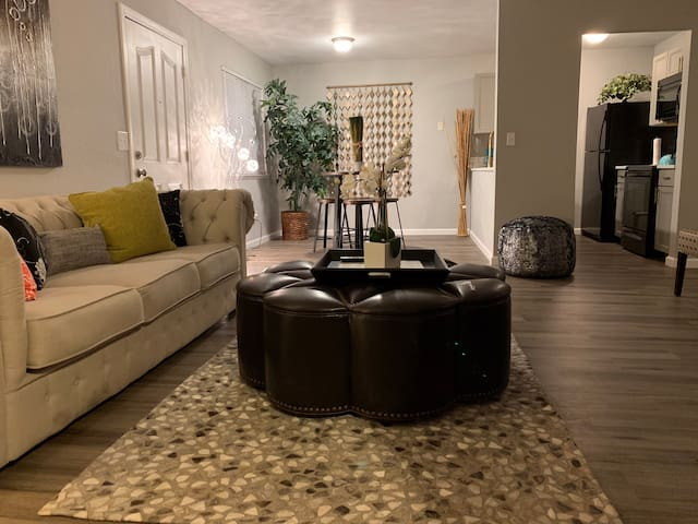 Modern newly remodeled condo 2 bedroom