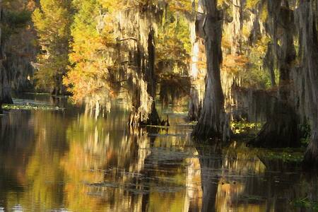 Caddo Lake - Couple's Cabin