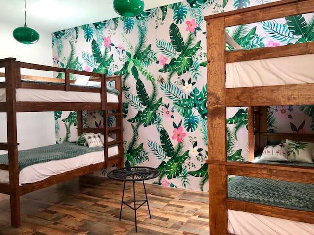 Hostal Hoja Santa habitación tropical