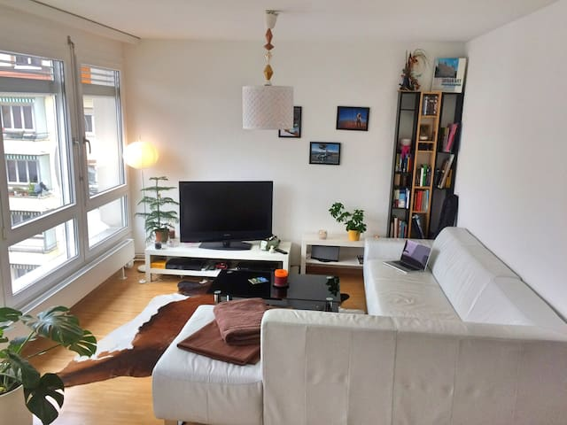 lovely appartment in easy area  - Berne - Apartment