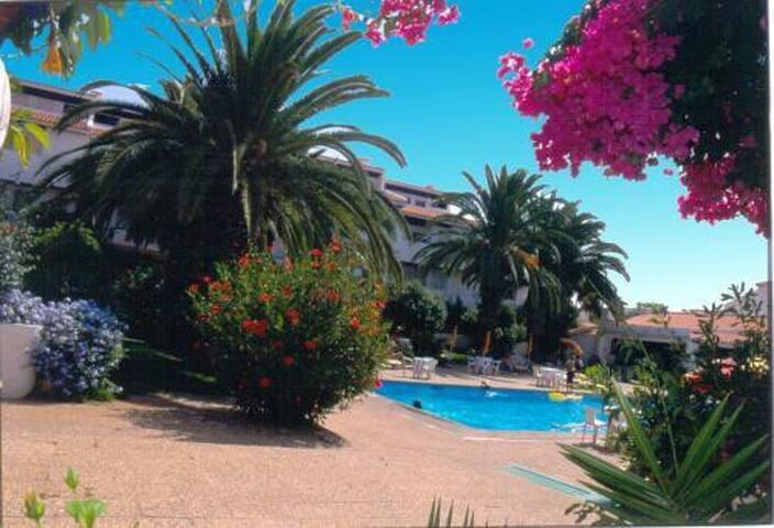 No Algarve, com tudo ao pé.