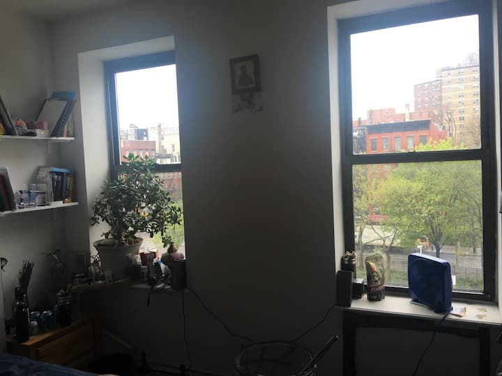 Lower Manhattan room - best part of town