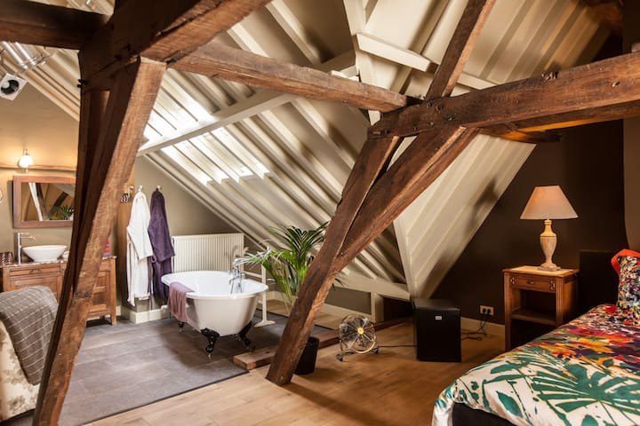 Privékamer in bed & breakfast        B&B DOOR10, suite ' EGO' top under the roof!