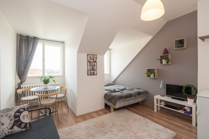 Cosy Apartment in the heart of Old Prague