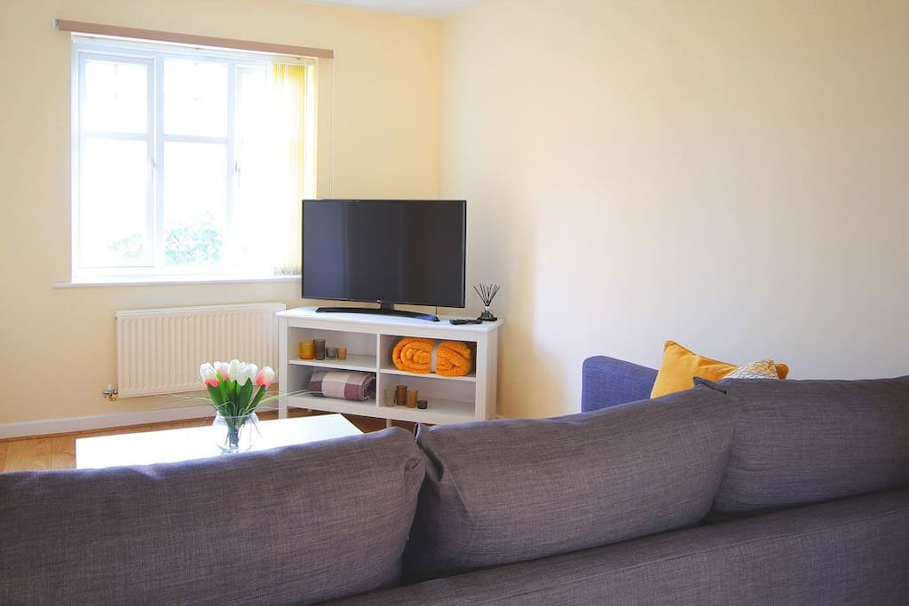 Smart TV in lounge