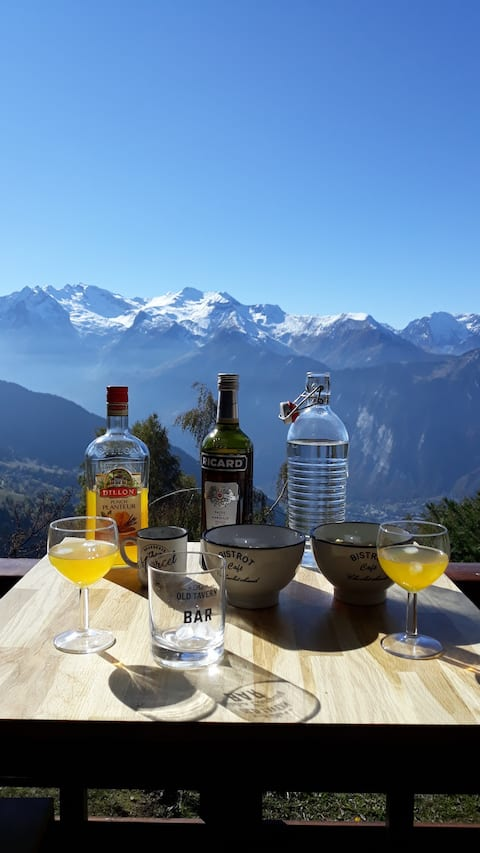 Outstanding view of the oisans alpe d 'huez