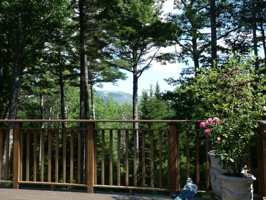 The gorgeous mountain view from the deck.