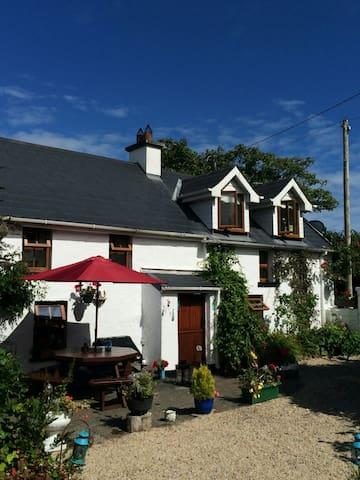 Traditional Irish cottage - Fethard On Sea  - Haus