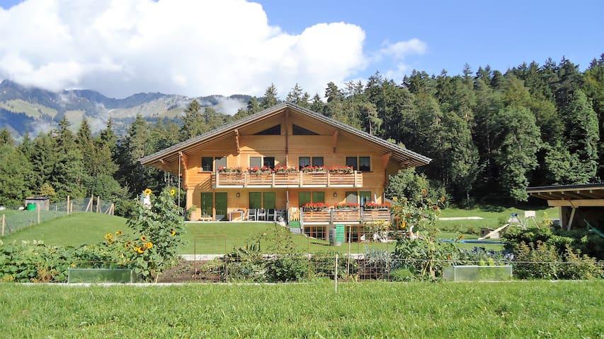 Gemütliche Wohnung in der Natur - Diemtigen - Selveierleilighet