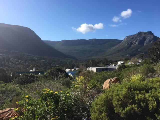 Fynbos mountain suite