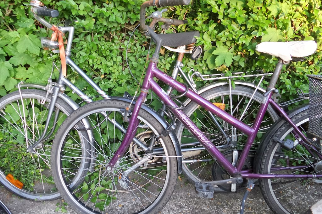 Your bikes - old but ridable