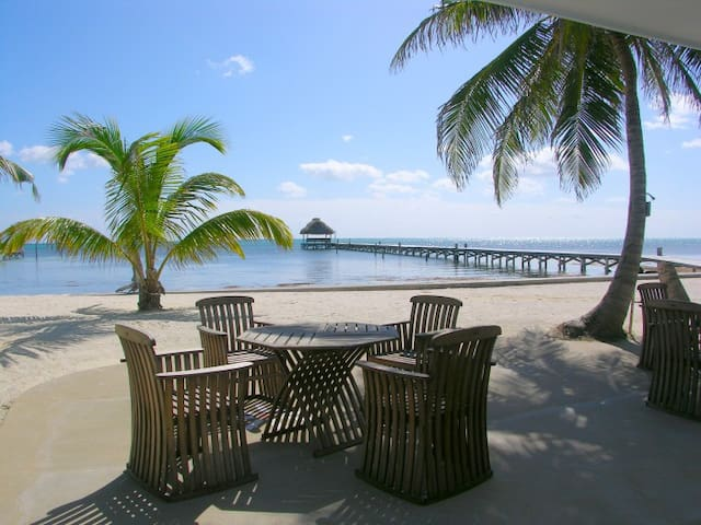 Apartments For Rent In San Pedro Belize