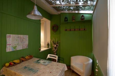 """B&B CREMONA  :   appartamento """" GREEN """"."""